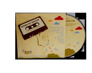 DVD als Kopierung oder Pressung in Kartonstecktasche